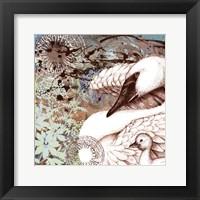 Framed Swan Splash I