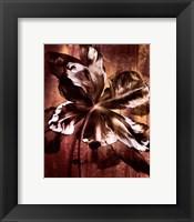 Framed Bronze Parrot Tulip I