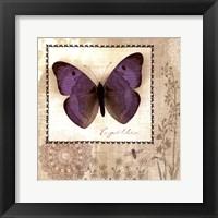 Framed Butterfly Notes I