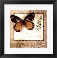Framed Butterfly Notes V