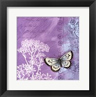 Butterfly Notes VIII Framed Print