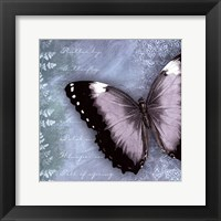 Framed Butterfly Notes X