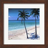 Framed Palm island I