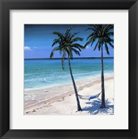 Framed Palm island I
