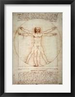 Framed Vitruvian Man
