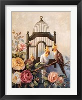 Framed Cockatiel and Roses