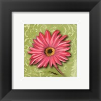 Framed Blooming Daisy I