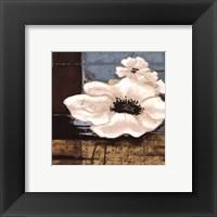 Framed White Poppies II