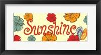 Framed Sunshinie