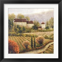 Framed Tuscany Vineyard I