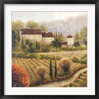 Tuscany Vineyard I Framed Print