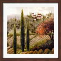 Framed Tuscany Vineyard II