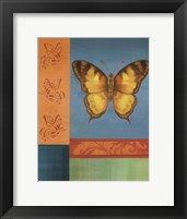Framed Colorful Wings II