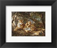 Framed Leopard with Cub