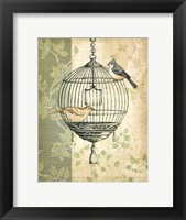 Framed Botanical Birdcage I