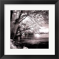 Framed Spring On The River Square I - mini