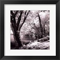 Framed Spring On The River Square II - mini