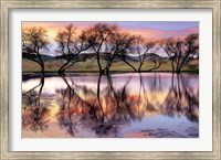 Framed Lake Reflection