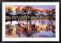 Framed Lake Reflection