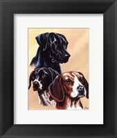 Framed Dog Collage II