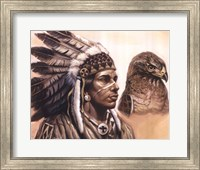 Framed Young Hawk
