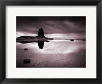 Framed Black Nab