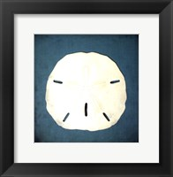 Framed Sand Dollar II