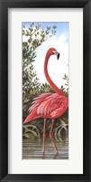 Framed Flamingo 2