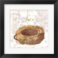 Framed Botanical Nest I
