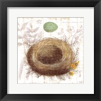 Framed Botanical Nest II