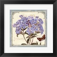 Parisian Flower II Framed Print
