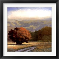 Framed Potrero Meadow
