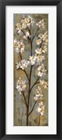 Framed Almond Branch I