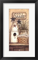 Framed Seeds For Sale