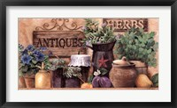 Framed Antiques And Herbs