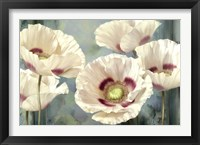 Framed Tasmanian Poppies I