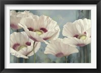 Framed Tasmanian Poppies II