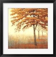 Framed Autum Trees I