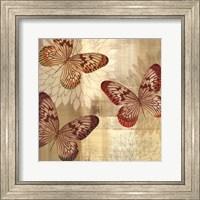 Framed Tropical Butterflies I