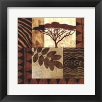 Framed Acacia Sunrise II