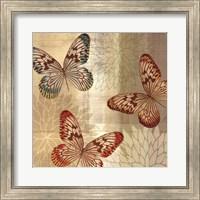 Framed Tropical Butterflies II