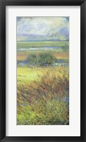 Framed Shimmering Marsh II