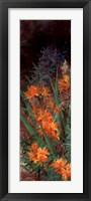 Framed Wild Lily Garden I