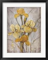 Golden Irises I Framed Print