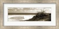 Framed Boardwalk Shadows