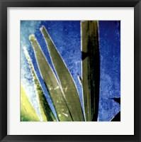 Framed Tropical Memory II
