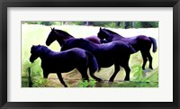 Framed Guilford Horses II