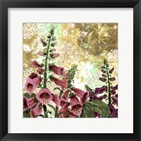 Framed Foxglove Meadow I