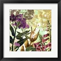 Framed Foxglove Meadow II