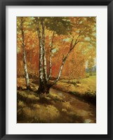 Framed Woodland Stream I